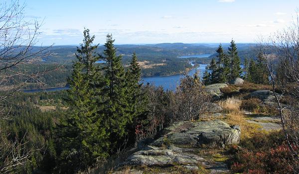 Utsikt fra Kjerkeberget