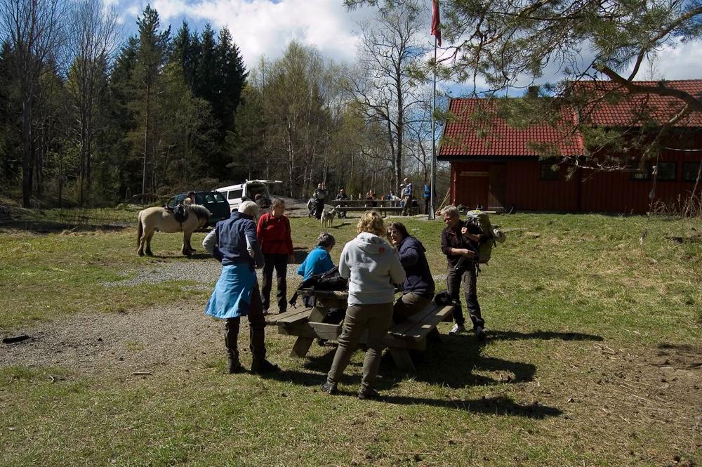 """Vi er på vei til å forlate Tjernsbråtan etter siste matpause. Eva, helga, Marit, Monica, Julie og Elin (""""Blakken"""" og """"Vaffen"""" i bakgrunden...)"""