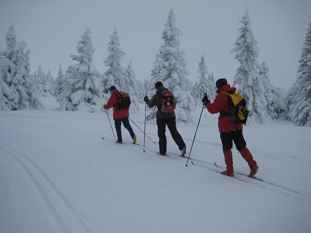 Hanne, Anja og Marianne i fint driv opp mot Sjusjøfjellet (Foto: Kari Petersen)