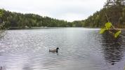 Den siste søndagen i mai sto i vannenes tegn for LT (foto: Katrin Wiegmann)