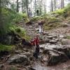 Østmarka opp og Østmarka ned (foto: Katrin Wiegmann)