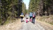 Damene i andre orreleiklag på veg innover i skogen (Foto: Jeg Keaw)