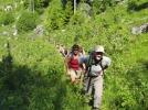 Her kommer LT! På vei oppover Hærfangen en irrgrønn og varm sommerdag. (Foto: Ni