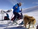 1/2 randonneefraksjon, 1/1 hund (Foto: Kari Kirkeby)